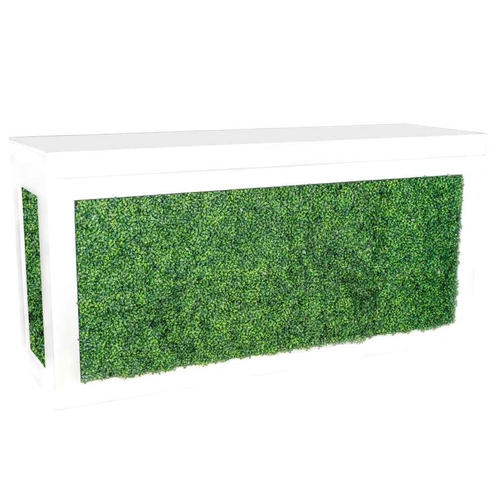 White Cambio Bar With Green Hedge Insert 8 Rentals