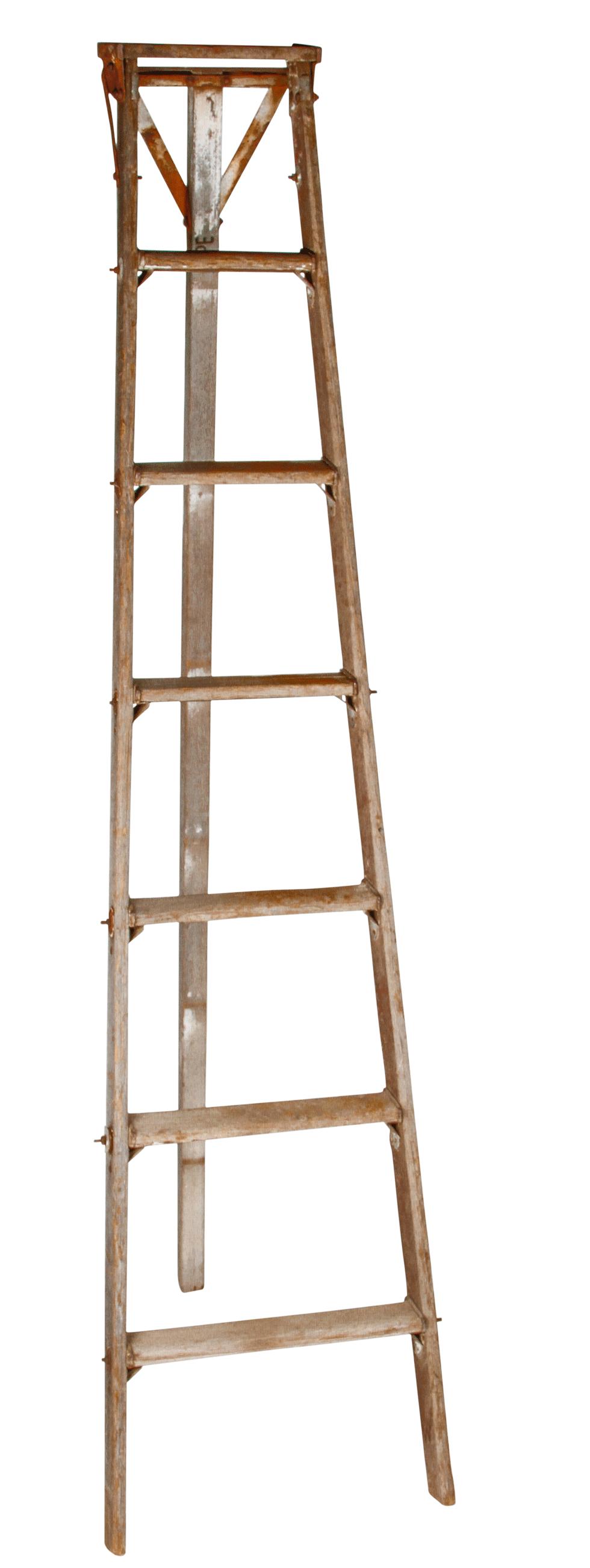 Fruit Picking Ladder 7 Tall Rental Bright Rentals